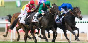 Explaining accumulator bets – Choosing the perfect accumulator horse racing bets