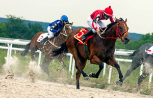 The milieu of horse racing in Great Britain – How it has evolved