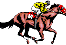 An overview on the different types of horse racing bets – Explaining your betting options