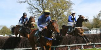 Templegate's top horse racing tips – Which are the horses to follow through summer?
