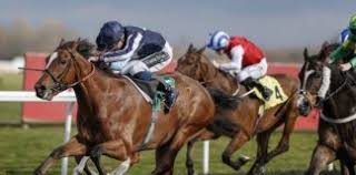 Review on Betfred horse racing betting – Vital facts that you need to know