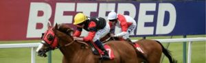 Live streams of horse racing from Betfred