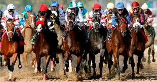 Betting on British horse races (summary)