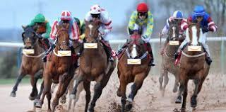 Places Of Horse Racing For Capacity