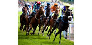 Essential facts on Cheltenham racecourse – A guide for novice horse racing bettors