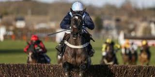 Essential facts on Taunton racecourse – A guide for novice horse racing bettors