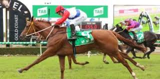 Indian top horse betting tips