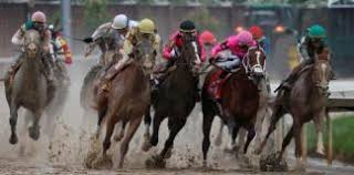 GG top horse racing tips - Top Horse Racing Events UK - best