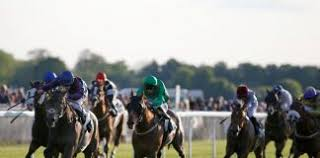 Wolverhampton races – Betting tips