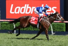 Ladbrokes horse race betting review – A guide for the first-time punters
