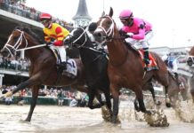 Kentucky Derby event guide and details on their betting odds, promotions and more