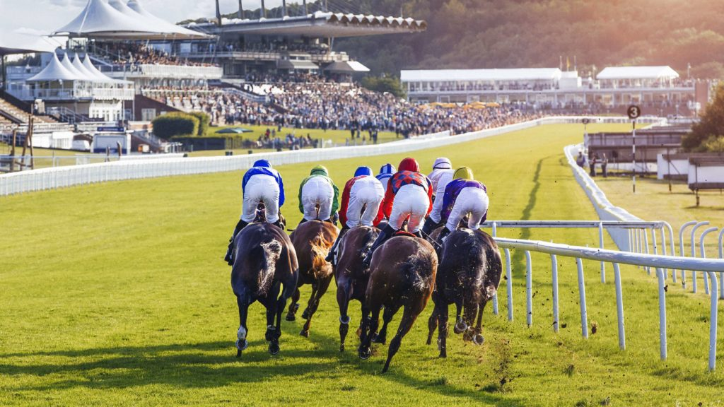 Betting odd levels at Glorious Goodwood